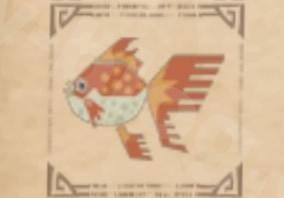 環境生物:小金魚