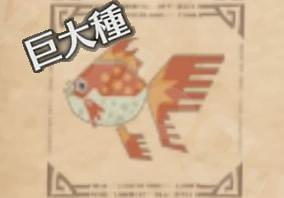 環境生物:ドス小金魚