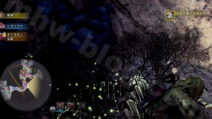 陸珊瑚の台地の「オタカラ蒐集01」
