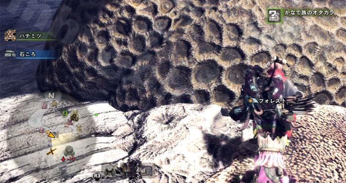 陸珊瑚の台地の「オタカラ蒐集05-02」