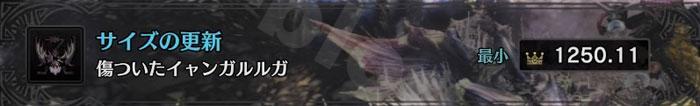 「傷ついたイャンガルルガ」の最小金冠サイズ1