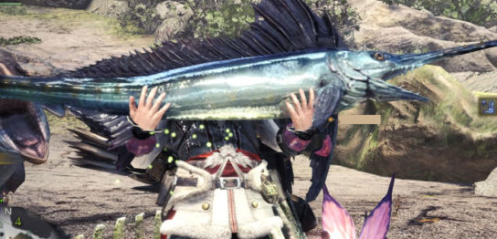 V11.50金冠サイズのお魚
