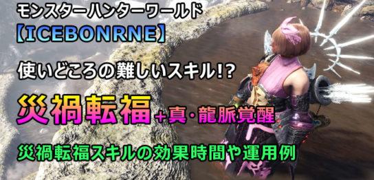 災禍転福+EX龍紋装備