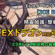 EXドラゴン対応弓装備